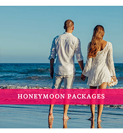 hooneymoon packages