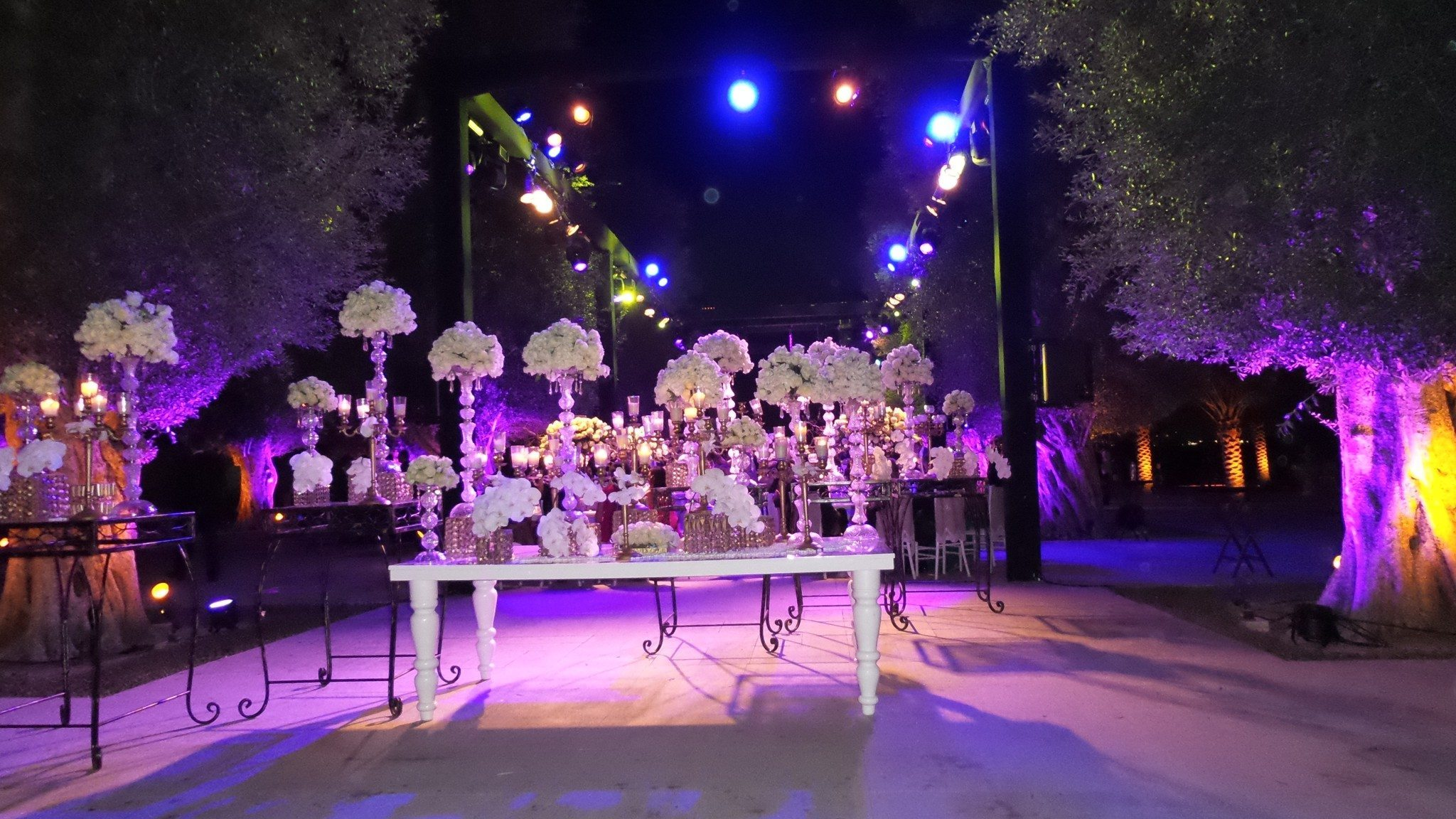 Desert palm hotel dubai wedding